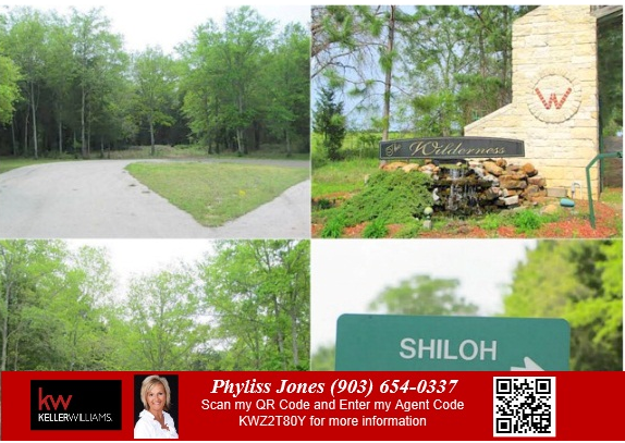 Own a Perfect Off Water Lots in Streetman,TX