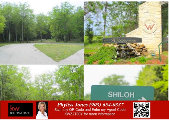 Own a Perfect Off Water Lots in Streetman, TX