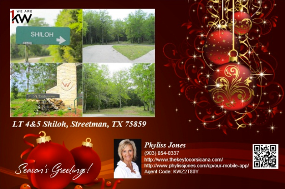 Amazing Deal in Off Water Lots 4&5 Shiloh in Streetman, TX