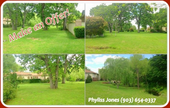 Make an Offer for Corsicana Lot